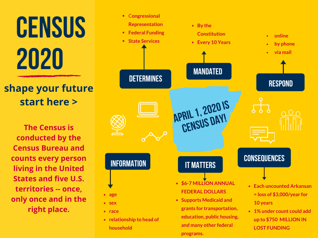 2020 Census infographic